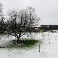 Brunch På Krogerup Avlsgaard