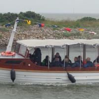 Sejltur til fiskeauktion med turbåden Martha