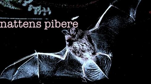 Nattens Pibere