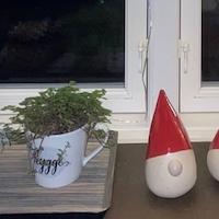Julehygge i Kaffehuset