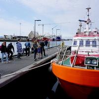 Morgentur på Skagen Havn