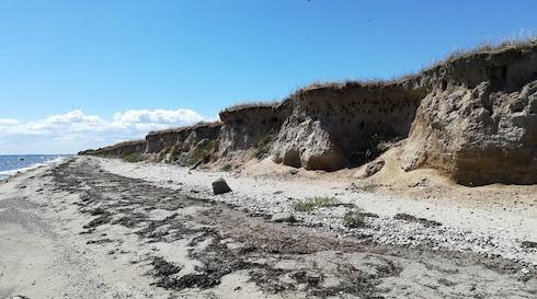 Vandretur til Klinten - Aktiv Ø