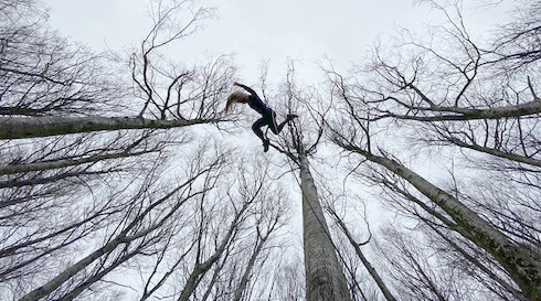 BARK Nycirkus i træerne ved Dovns Klint