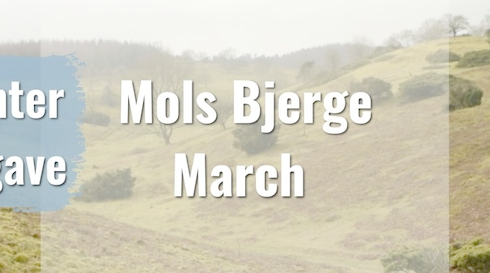 Mols Bjerge March - Vinter